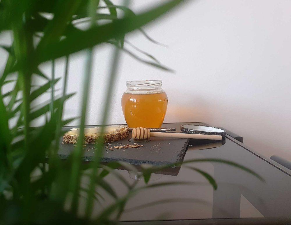 Med i pcelinji proizvodi